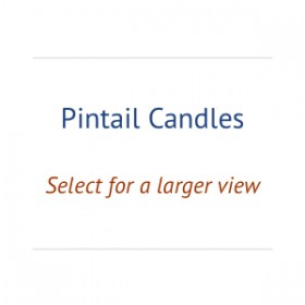 00_pintail-candles_holder