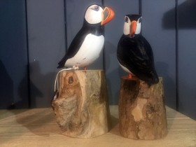 puffins_on_logs