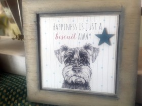 happiness_is_just_a_biscuit_away_